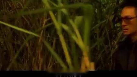 杜琪峰御用配角在《放逐》里最经典的一段台词
