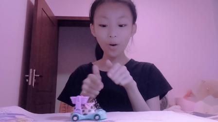 小叶玩具屋:介绍仓鼠乐园玩具