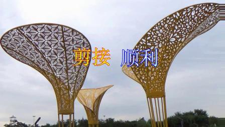 滨海新区汉沽和悦广场舞(海堤公园游)