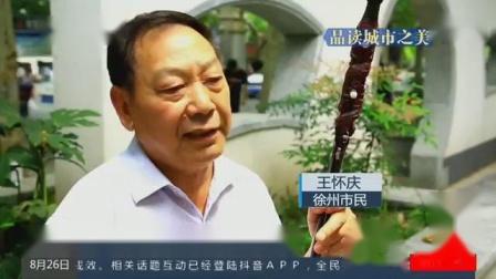 """发现了吗?徐州街头空地变身""""微园林"""" 点缀满城春色"""