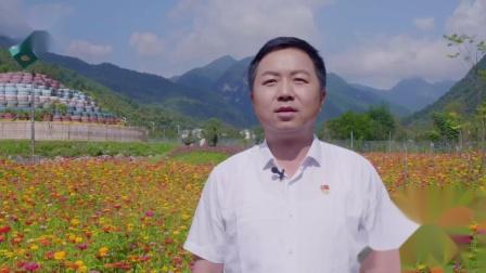 神农架林区人民区长刘启俊为神农架代言:世界这么大,我想去神农架。