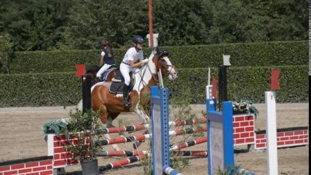 horsejump-stick