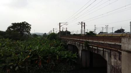 广铁广段的SS9G型电力机车牵引沪广直达特快Z99次列车和广铁广段的HXD1D型电力机车牵引K356次列车在广州北站附近相遇