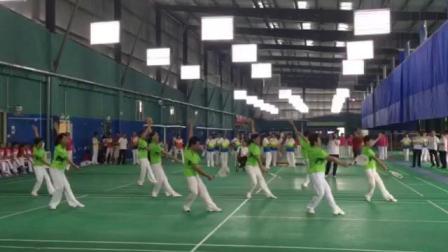 2019年深圳市南山区南山杯柔力球比赛国家规定套路《蝶恋花》