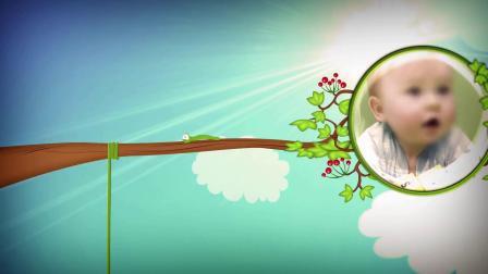 ae片头 pr模板 361可爱卡通小鸟树木儿童相片展示视频ae模板 会声会影模板 PPT模板