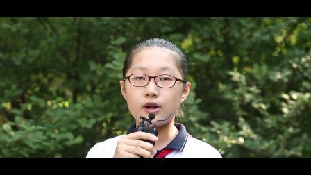 哈尔滨市中山路小学校2019届5年14班毕业MV