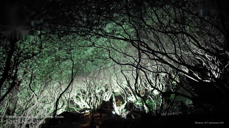 teamLab: A Forest Where Gods Live
