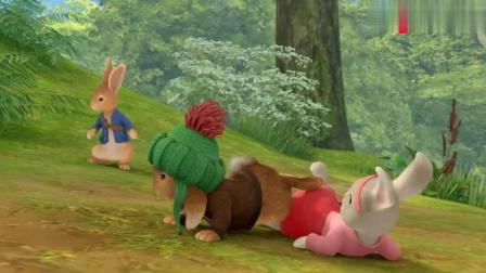 比得兔:本杰明真是神了,只是一个野苹果,就把楞果子打下来了!
