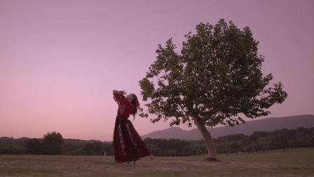 飞宇稳定器   电影调色+《东宫》配乐,带你感受古典舞蹈的柔情美