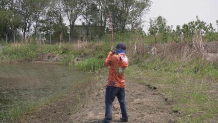 渔猎路亚雷强视频 黑鱼一个人字涌冲过来爆口