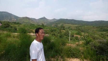 王天河:风水宝地花蕾穴上集,寻龙点穴风水大师阴宅地理风水视频