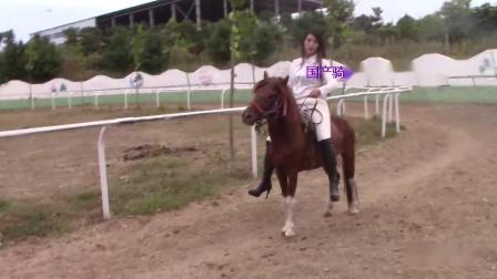 国产骑马40