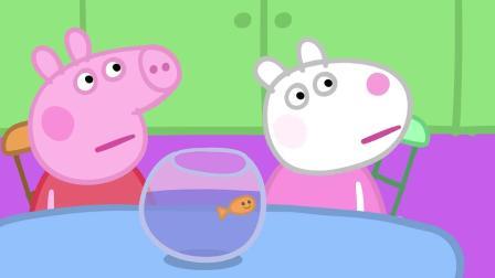小猪佩奇:埃德蒙的动物是一只壁虎,它会像埃德蒙一样吐舌头!小猪佩奇:仓鼠兽医把自己的小宠物带来了,它叫做乌龟小土豆!