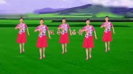 爆红全网广场舞《荞麦花》歌甜舞美,简单易学_标清