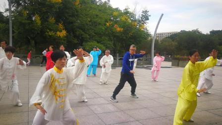 杨式太极拳40式竞赛套路—江滨公园