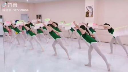 君晓天云夏季儿童舞衣女童芭蕾舞中国舞吊带练功服检定考试服金丝绒棉形体服