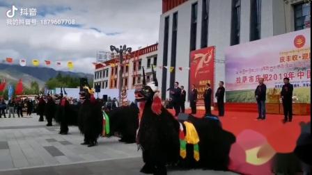 拉萨中国农民丰收节2