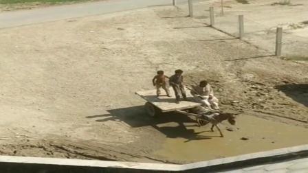 巴基斯坦穷人家的孩子早当家,看这两孩子驾驶技术,挺稳当啊