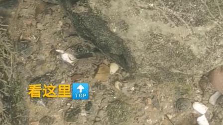 9.20三江侗族自治县