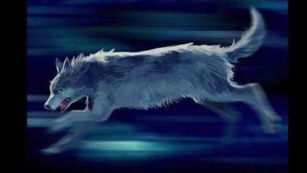 【小狼幻月】小时候写的一篇故事《与狼共舞》