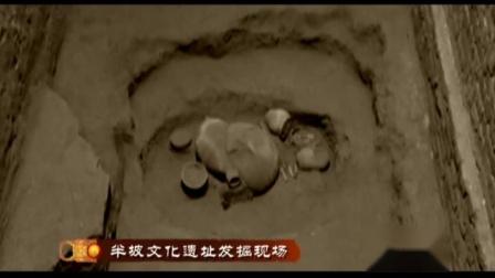 【历史纪录片】中国通史-古代史【全180集】 - 2 - 曙光初现