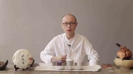 水仙的甘醇、白茶的清雅,这款老茶让人眼前一亮!