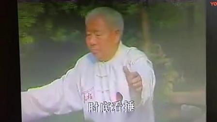 傅钟文宗师演练85式太极拳