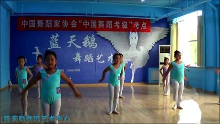 蓝天鹅考级视频4级