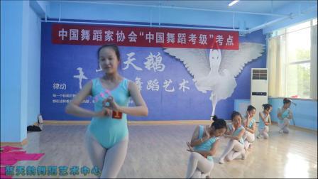 蓝天鹅考级视频9级