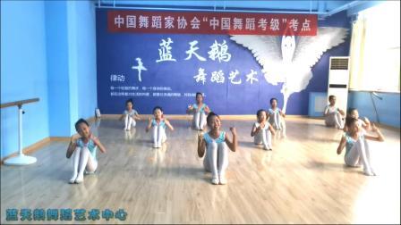 蓝天鹅考级视频6级