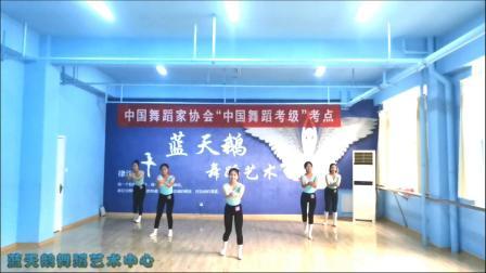 蓝天鹅考级视频10级