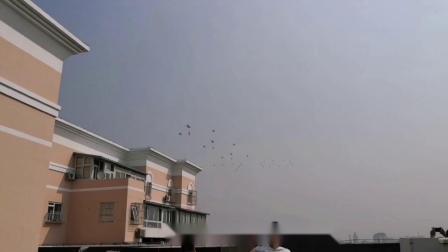 手机拍摄北京国庆阅兵飞机梯队表演