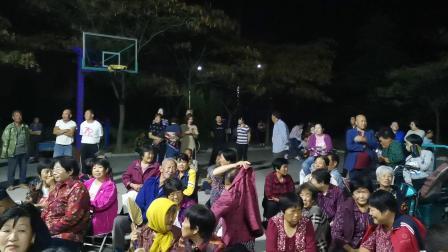 2019十一峒岭村节目
