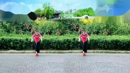 花精灵广场舞《我的祝福你听见了吗》编舞:午后骄阳