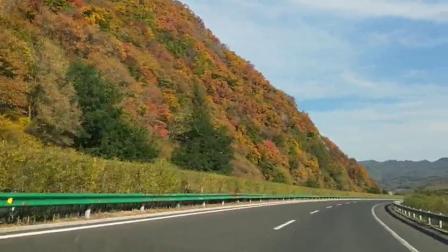 树树皆秋色,山山唯落晖🍁🍂