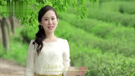 杨西音子《江南味道》视频。