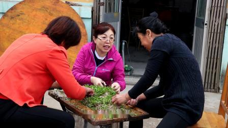黄山后村 重阳节影片
