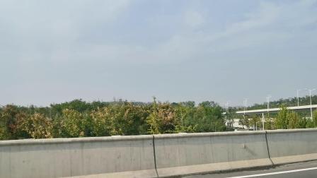郑州龙湖西边的凤山!