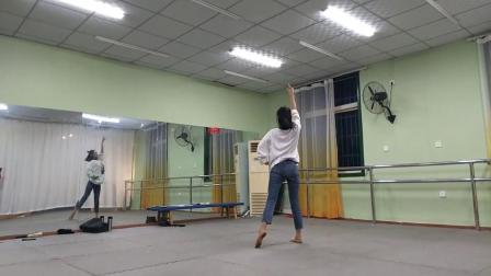 阜阳成人舞蹈,阜阳艺路舞蹈培训古典舞一生独一视频分解教材五合音乐