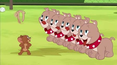 斯派克哪来的五个儿子?猫和老鼠搞笑卡通动画