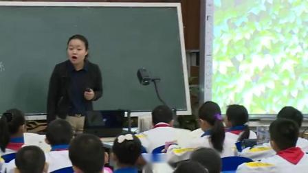 小学语文四年级上册《爬山虎的脚》天津
