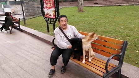 美媚滨河公园随录老包谷和他左右二膀(我的剪辑视频_201910111417)