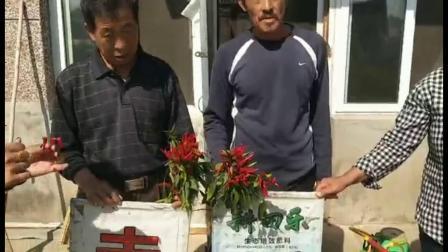 耕田乐辣椒