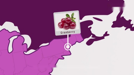 【单创小倪】澳洲进口Swisse高浓度蔓越莓胶囊(蔓越莓精华 呵护女性私密健康)