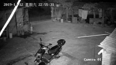 广西博白文地地震