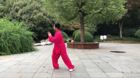 习练傅传杨氏太极拳28式