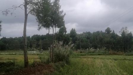 家乡的山水 20191009