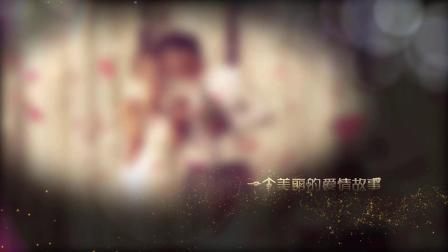 AE模板 pr模板 1102唯美绚丽金色粒子对碰出字幕婚礼婚庆预告片求婚求爱表白视频片头ae模板 年会视频 企业视频