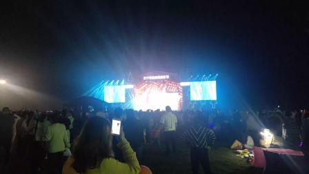 黄海森林音乐节3
