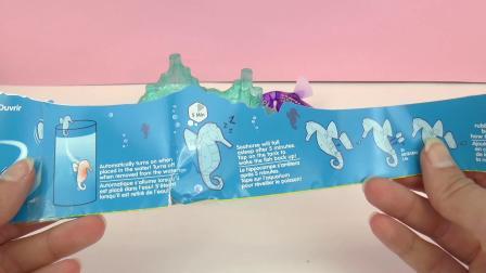 德国 Hexbug 智能 纳米 机械 电子 宠物 动物 昆虫 深海 神秘 紫色 海马 开箱 展示